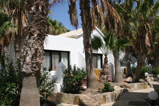 Surfen lernen auf Fuerteventura