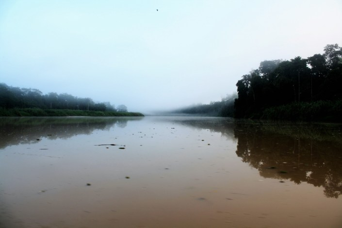 Photos From The Road: The Jungles of Borneo