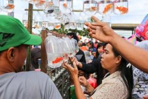 Shopping for goldfish at the Sunday market on Pantai Losari, Makassar