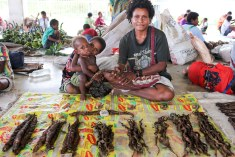 Selling tobacco at the market in Wewak