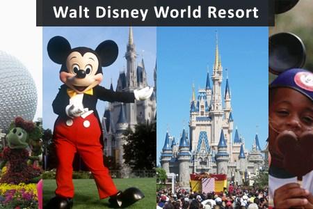 walt disney world banner 10