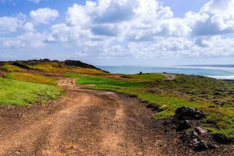 The lush coastline of Northern New Zealand