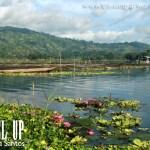 Lake Sebu Lodges: Estares Lake Resort and Punta Isla