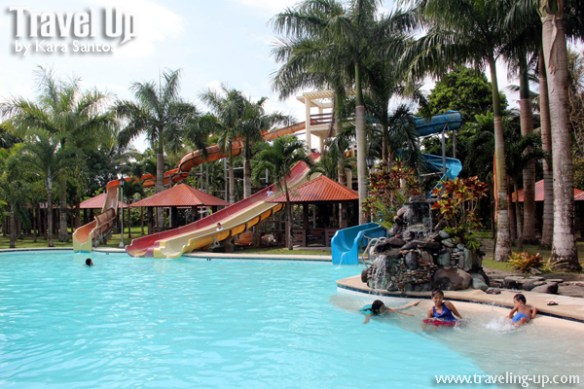 pineapple island resort camarines norte