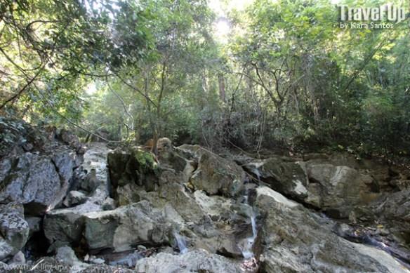 palo alto falls walkway stream