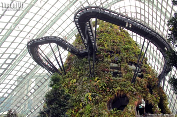 gardens by the bay cloud forest 03