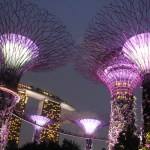 Surreal Supertrees in Gardens by the Bay