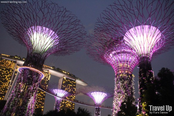 gardens by the bay singapore 01