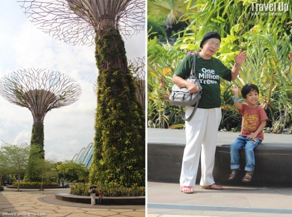 gardens by the bay singapore 03
