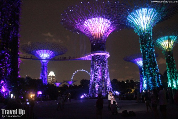 gardens by the bay singapore 05