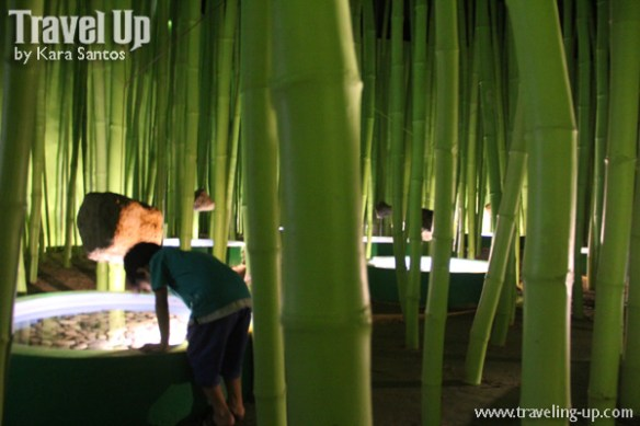 pinto art museum antipolo indoor bamboo forest
