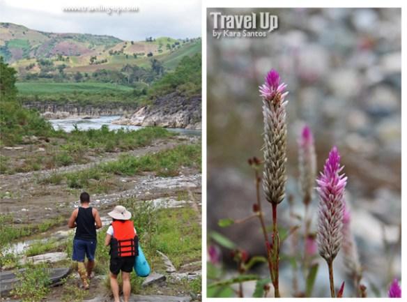 quirino province siitan river flowers