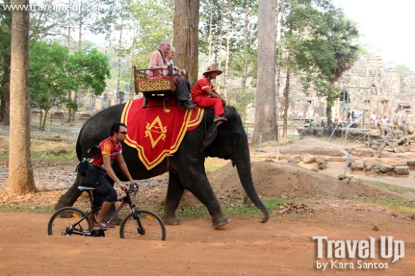 biking cambodia angkor archaeological park elephant outsideslacker
