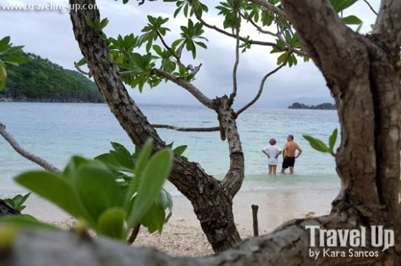 tugawe cove resort caramoan beach trees