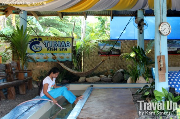 tibiao fish spa antique