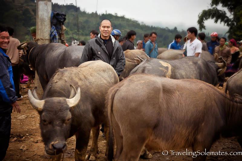 23-Animal Trading, Bac Cha, Market, Vietnam