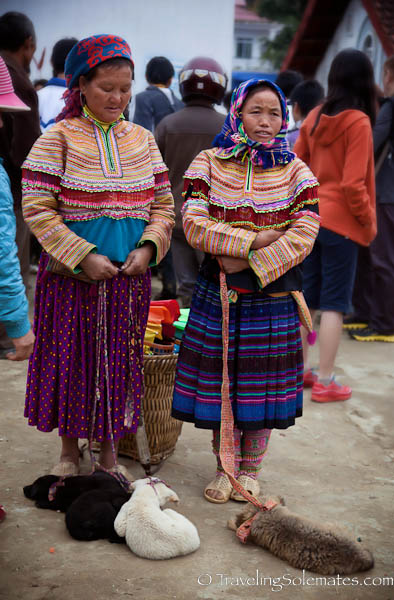 Flower Hmong Dogs for Sale, Bac Ha Market, Vietnam
