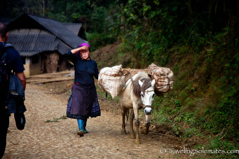 07_Trekking in the Hillribe Villages around Bac Ha, Vietnam