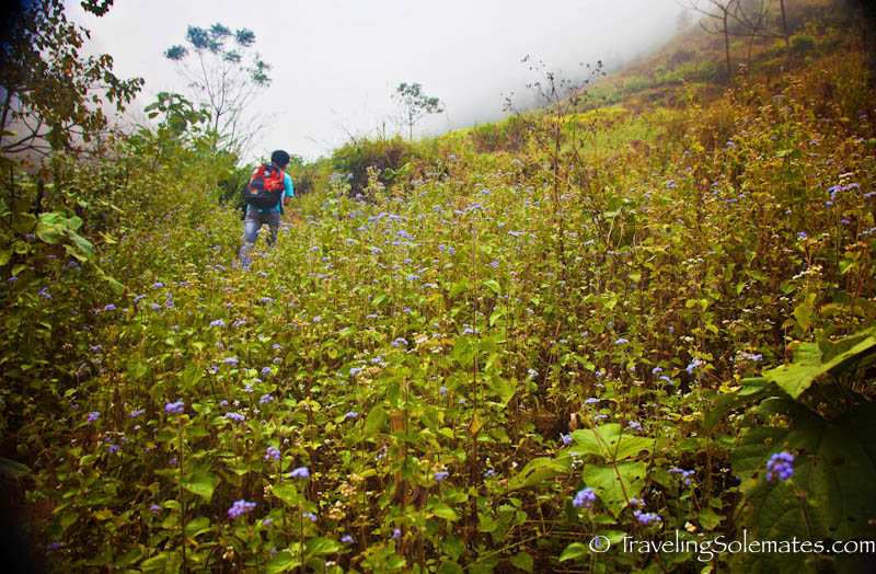 12_Trekking in the Hillribe Villages around Bac Ha, Vietnam