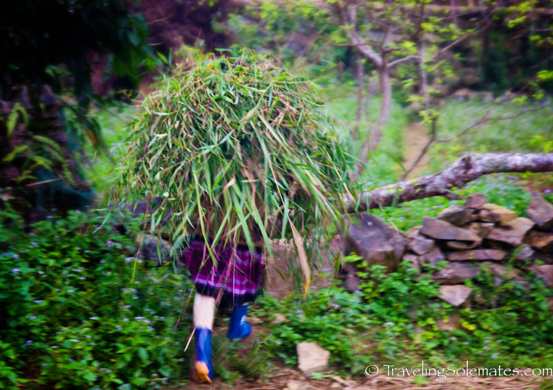 25_Trekking in the Hillribe Villages around Bac Ha, Vietnam