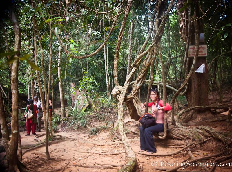 Natural Swing, Kbal Spean, Cambodia