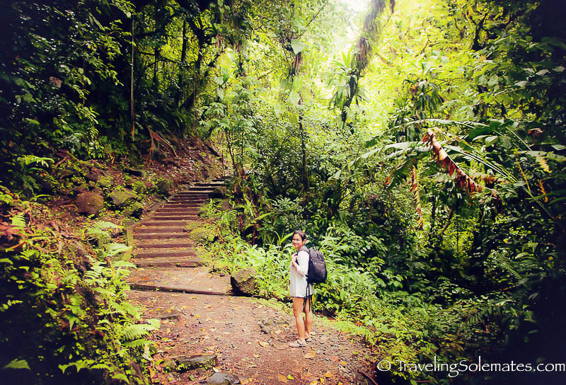 The hike to Trafalgar Falls, Dominica