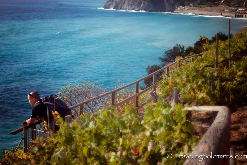 Vineyard Walk in Manarola, Hiking in Cinque Terre, Italy