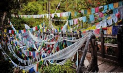 01b-Prayer Flags in Bumthang, Bhutan