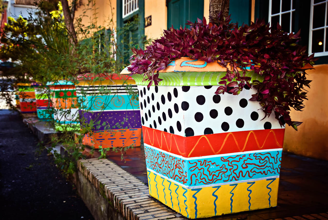 Colorful Planters, Cape Town, South Africa