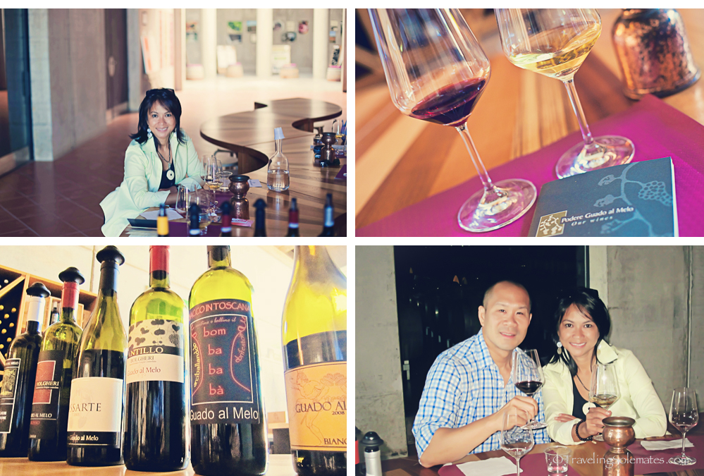 Wine Tasting, Podere Guado el Melo Winery, Bolgheri, Tuscany, Italy