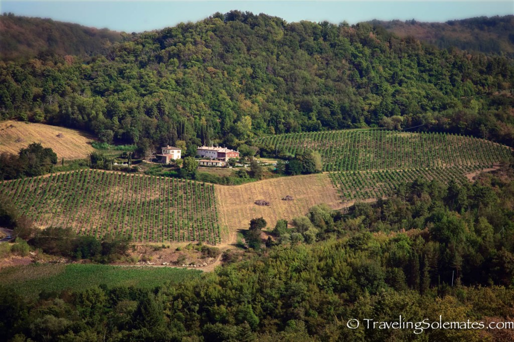 View from Castello di Querceto Winery, Greve in Chianti, Tuscany, Italy