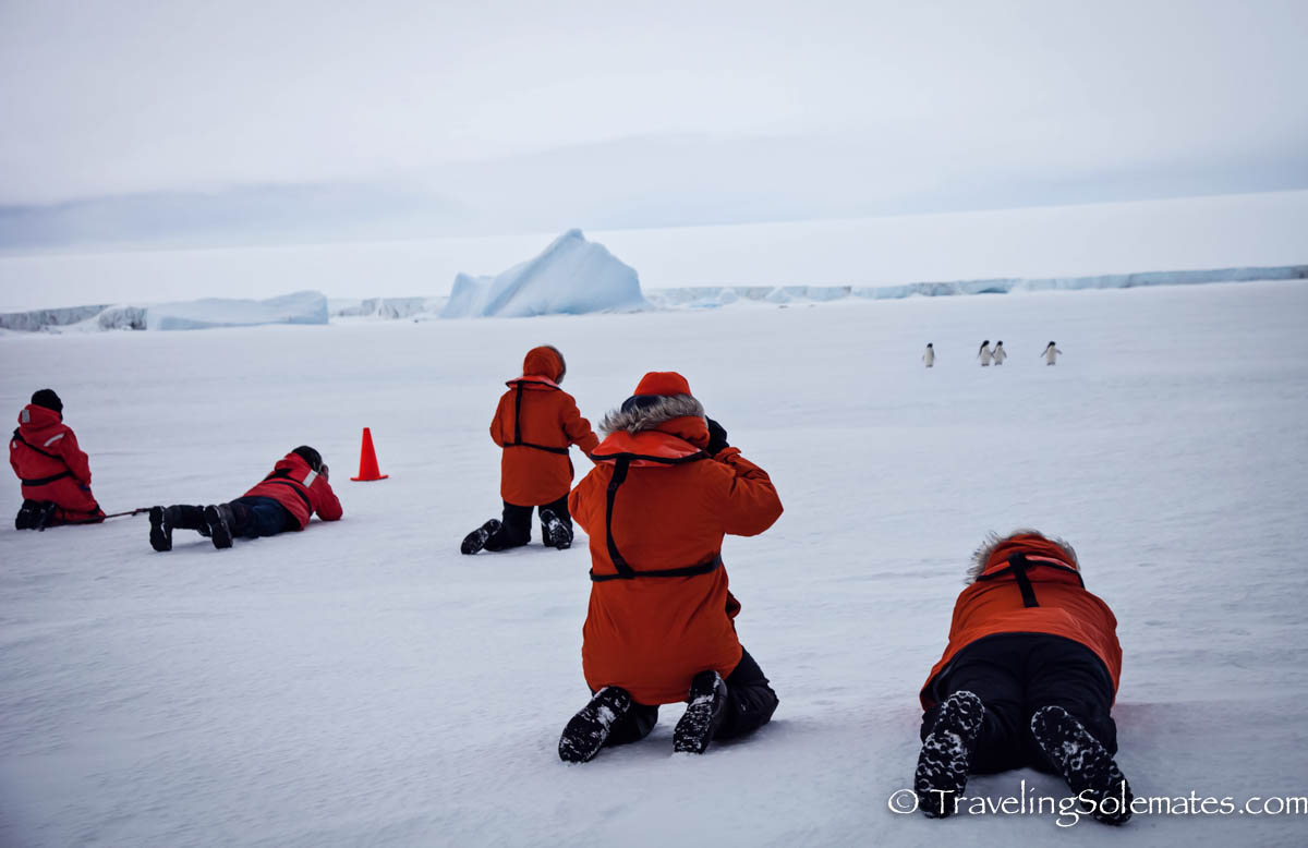 People taking photo of penguins on a Sea Ice in Active Sound, Antarctica, National Geographic Explorer, Lindblad Expedition