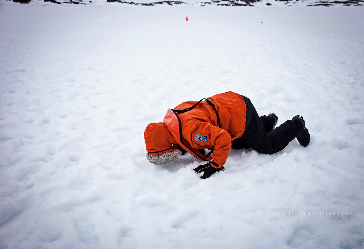 Kissing the ground. Lockroy, Antarctica, Natioanl Geographic Explorer, Lindblad Expeditions
