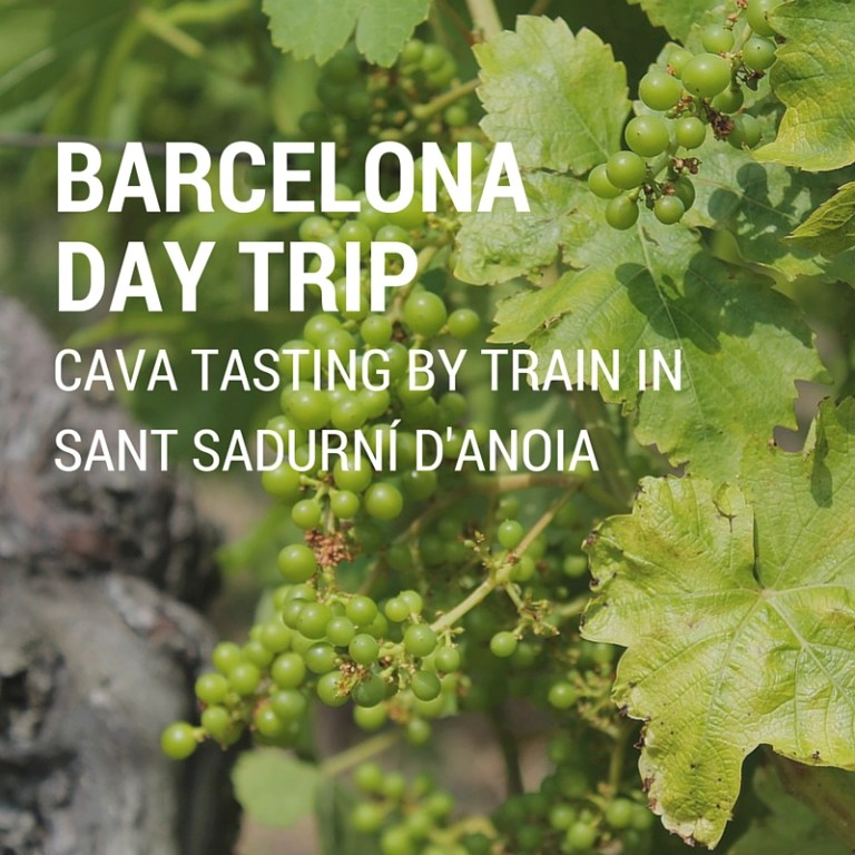 Barcelona Day Trip: Cava Tasting by Train in Sant Sadurní d'Anoia