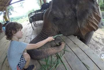 Luang Prabang for families