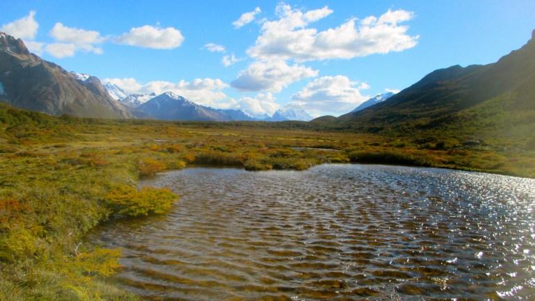marshy lagoon