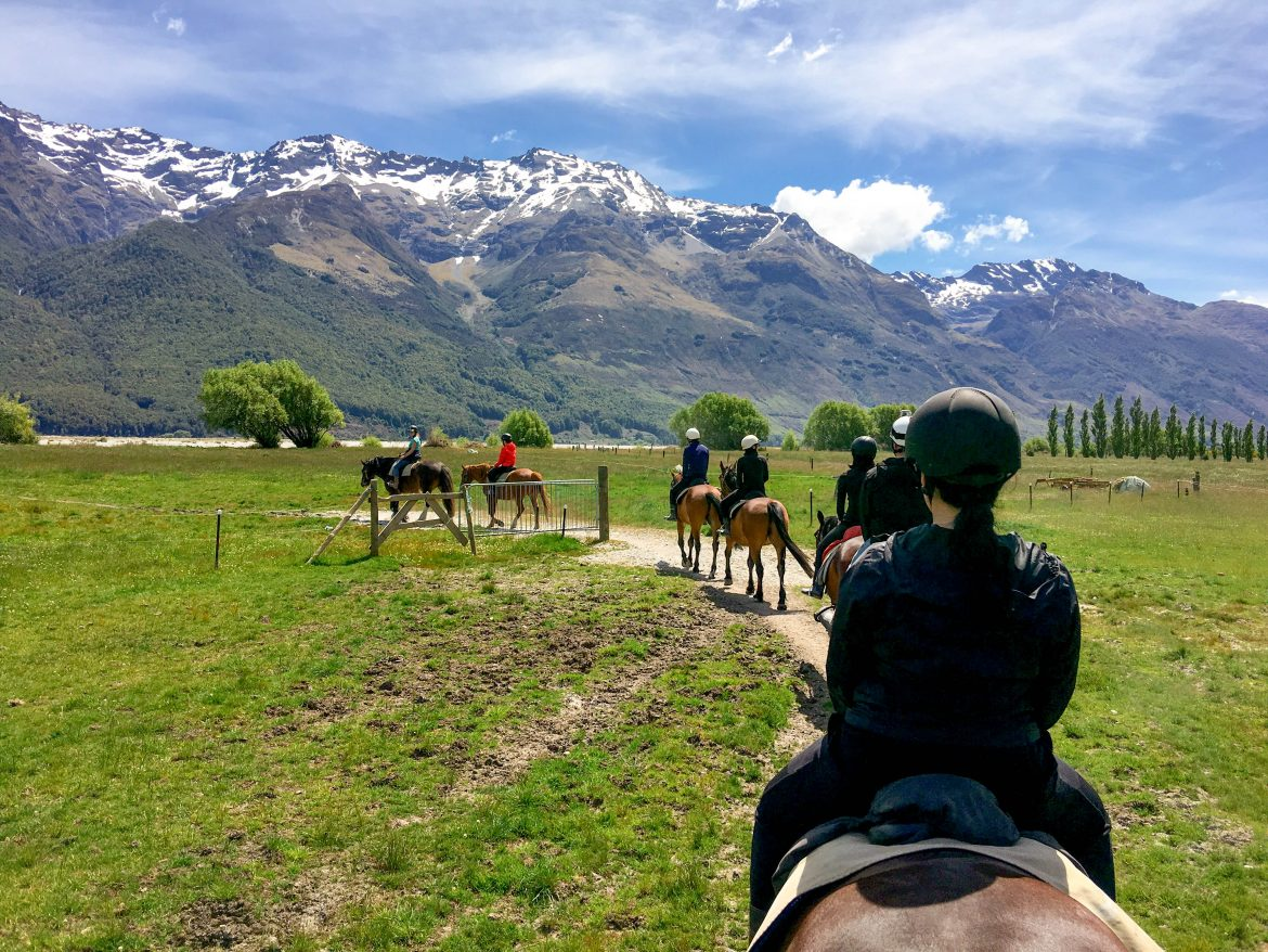 Lord of the Rings Horseback Riding & 4x4 Tour with Dart Stables
