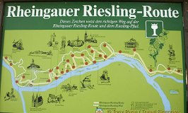 Discover the Rheingau Riesling Route