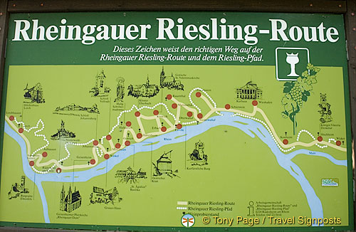 Rhine Riesling Route