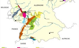 German Wine Regions – Part 2