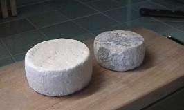 Tasting an Endangered Cheese in Piedmont