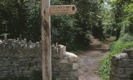 Cotswold Way – a new Walks Course for you