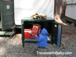 Toddler inspects bear box contents at Curry Village in Yosemite