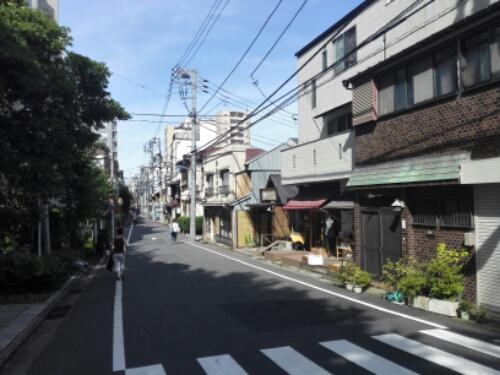 Nezu in Tokyo