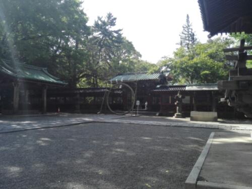 Courtyard at Nezu Shrine