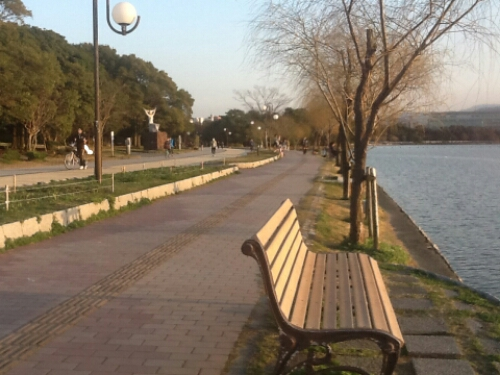 A bench by the lake at Ohori Park