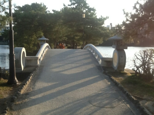 Bridge at Ohori Park