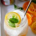 Citrus-Fizz1 - 2
