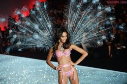 Joan Smalls - Birds of Paradise