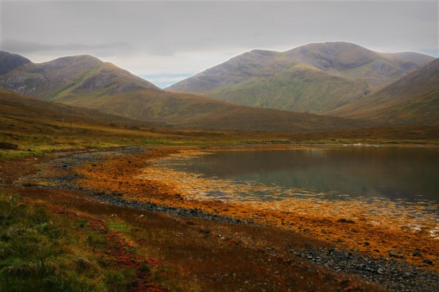 Scotland Crimson669 5